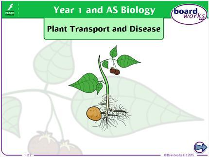 Boardworks Year 1 and AS Biology Contents Guide  Boardworks
