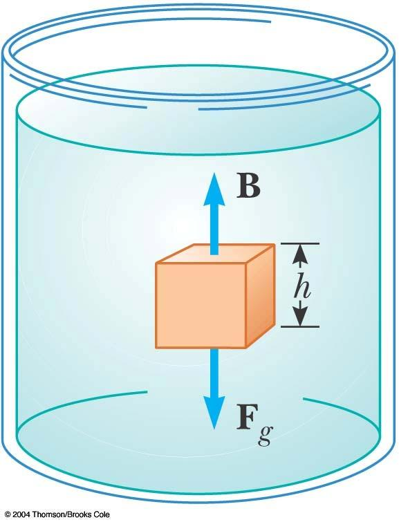 Archimedes s Principle, cont The pressure at the top of the cube causes a downward force of P