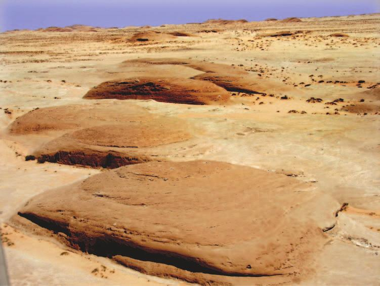 148 Saudi Arabia: An Environmental Overview Figure 6.21 Yardang fleet north-east of Al Ula (Photo: author). high impact collisions.