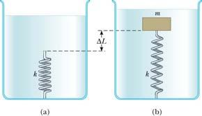 Problems On Static Fluid A light spring of constant k = 160 N/m rests vertically on the bottom of a large beaker of water. A 5.
