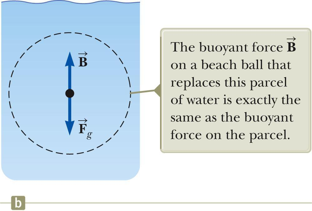 Buoyant Force The buoyant force is the upward force exerted by a fluid on any immersed object. The parcel is in equilibrium. There must be an upward force to balance the downward gravitational force.