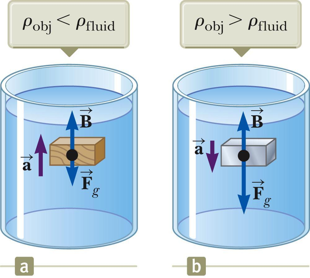 Archimedes s Principle: Totally Submerged Object, cont If the density of the object is less than the density of the fluid, the unsupported object accelerates upward.