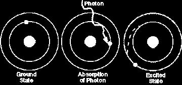 Light Energy Light is absorbed as photons Each photon carries a specific amount of
