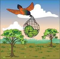 The Golden Windows - Unit 3 Worksheets: Reader 2 More Reading WORKSHEET 1a Why People began to Live in Houses Once upon a time, the great god Aum called the sun bird. He gave it three gourds.