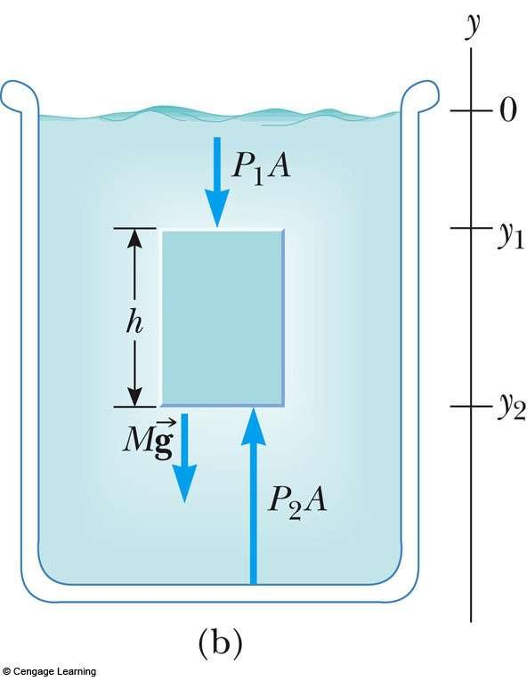 Pressure and Depth Examine the darker region, assumed to be a fluid It has a