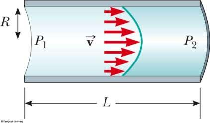 Poiseuille s Law Gives the rate of flow of a fluid in a tube