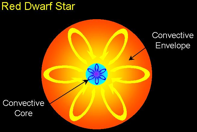 The Evolution of Stars A star s evolution depends on its mass We will look at the evolution of three general types of stars Red dwarf stars (less than 0.4 M Sun ) Low mass stars (0.