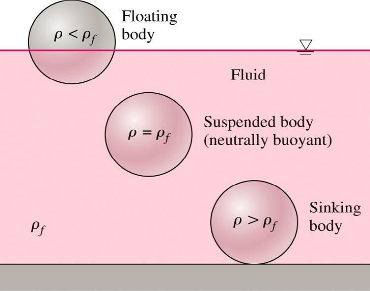 Stability of Immersed and Floating Bodies Buoyancy force F B is equal only to The displaced volume * specific