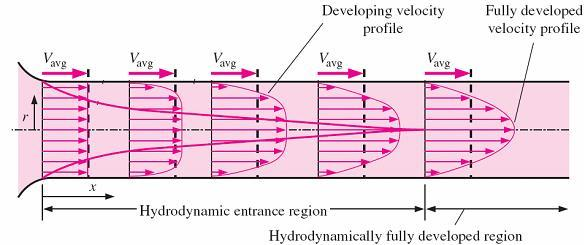 Hydrodynamic entrance region - the region from the pipe inlet to the point at which the boundary layer merges at the centerline.