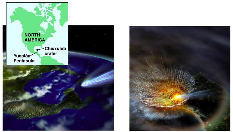 Cretaceous Extinction The Chicxulub impact crater
