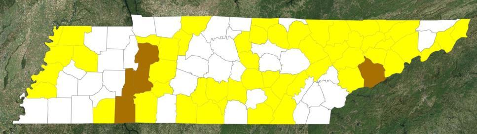 Declaration Request Tennessee On March 22, 2019, the Governor requested a Major Disaster Declaration for the State of Tennessee For severe storms, straight-line winds, tornado, flooding,